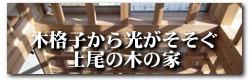 201_ageo.jpg
